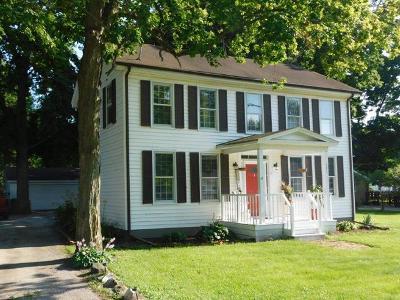 Braidwood Single Family Home For Sale: 121 East Eureka Street