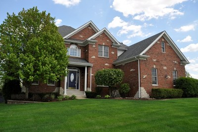 Oswego Single Family Home For Sale: 308 White Pines Lane