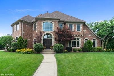 Elmhurst Single Family Home For Sale: 490 South Prairie Avenue