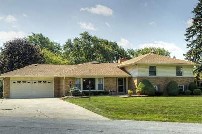 Tinley Park IL Single Family Home New: $474,000