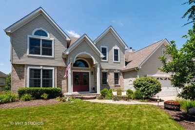 Elburn Single Family Home New: 868 Conley Drive