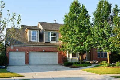 Streamwood Single Family Home For Sale: 8 Thistle Court