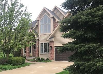 Geneva IL Single Family Home For Sale: $574,900