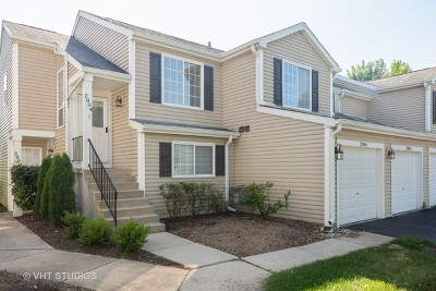 Schaumburg Condo/Townhouse For Sale: 2004 Windemere Circle #2004