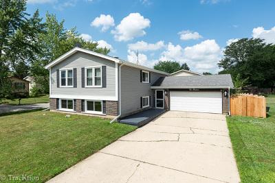 Bolingbrook Single Family Home New: 113 Flagstaff Drive