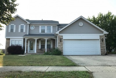 South Elgin Single Family Home For Sale: 224 West Harvard Circle