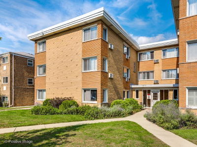 Evanston Condo/Townhouse For Sale: 1625 Howard Street #C3