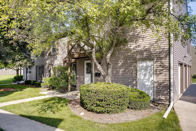 Wheaton Condo/Townhouse For Sale: 1120 Mount Vernon Court #A