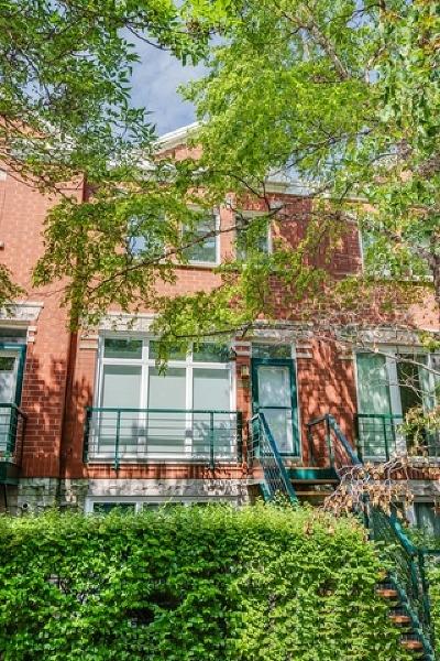 Condo/Townhouse For Sale: 2502 North Bosworth Avenue