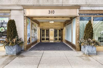Condo/Townhouse For Sale: 310 South Michigan Avenue #202