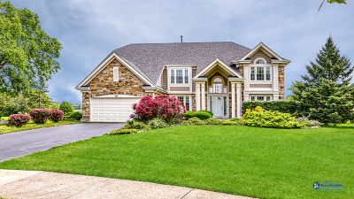 Buffalo Grove Single Family Home For Sale: 607 London Court