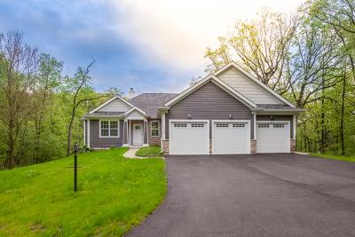 Spring Grove Single Family Home For Sale: 6466 Johnsburg Road