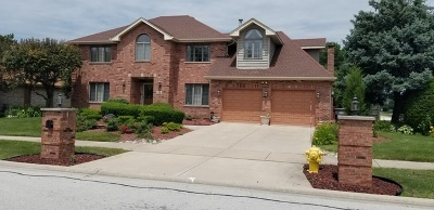 Orland Park Single Family Home For Sale: 8000 West 143rd Place