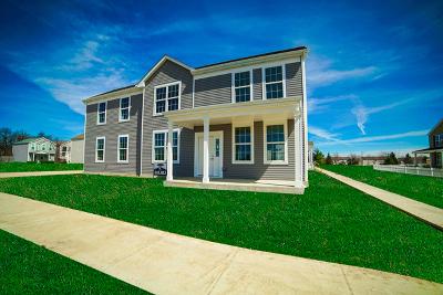 Aurora Single Family Home For Sale: 1016 Celebration Drive