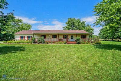 Custer Park Single Family Home For Sale: 22444 West County Line Road