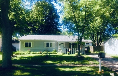 Bolingbrook Single Family Home For Sale: 219 Hadleigh Road