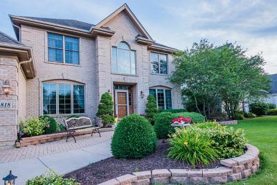 North Aurora Single Family Home For Sale: 818 Columbia Circle