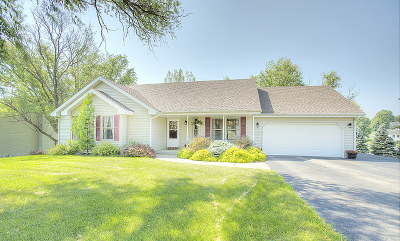 Ogle County Single Family Home For Sale: 3849 East Mockingbird Lane