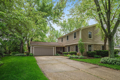 Naperville Single Family Home Re-Activated: 1562 Apache Drive