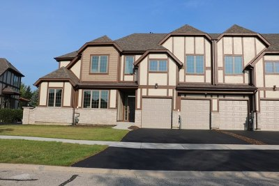 Plainfield Condo/Townhouse For Sale: 12728 Wild Rye Court #B