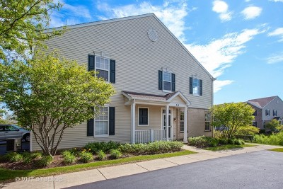 Oswego Condo/Townhouse For Sale: 210 Springbrook Trail South