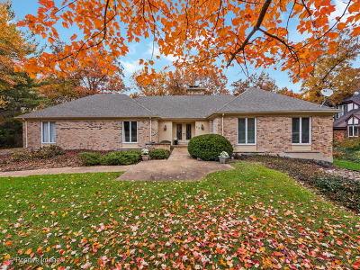 Burr Ridge Single Family Home New: 217 Lakewood Circle