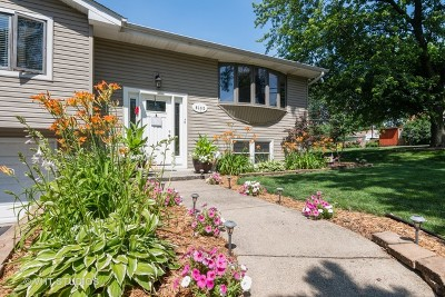 Downers Grove Single Family Home Price Change: 6100 Chase Avenue