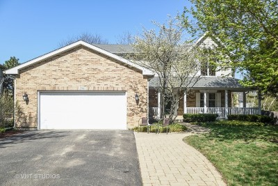 Grayslake Single Family Home For Sale: 296 Parker Drive