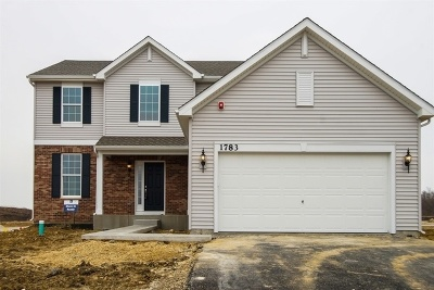 Hoffman Estates Single Family Home For Sale: 1828 Sheffield Drive