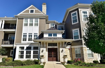 Hinsdale IL Condo/Townhouse New: $475,000