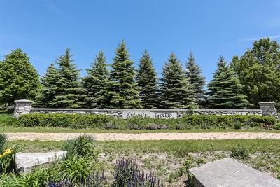 Homer Glen Residential Lots & Land For Sale: 16106 Syd Creek Drive