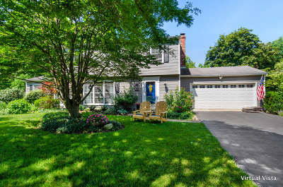 Naperville Single Family Home For Sale: 1755 Fairoak Road