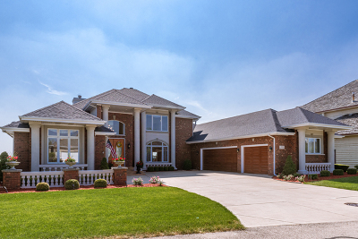 Plainfield Single Family Home For Sale: 13220 Wood Duck Drive