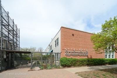Condo/Townhouse For Sale: 1300 West Altgeld Street #117