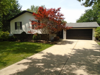 Glen Ellyn Single Family Home For Sale: 340 Lambert Road