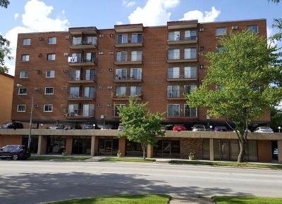 Elmwood Park Condo/Townhouse Contingent: 7830 North Avenue #613
