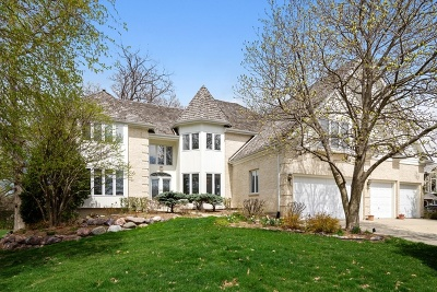 Bartlett IL Single Family Home New: $579,900