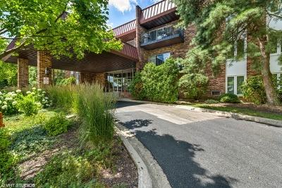Naperville Rental For Rent: 1041 West Ogden Avenue #218