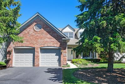 Burr Ridge Single Family Home New: 65 Huntington Court