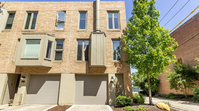 Oak Park IL Condo/Townhouse For Sale: $364,999