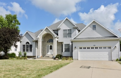 Bourbonnais Single Family Home For Sale: 1124 Game Trail South