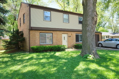 Bolingbrook Single Family Home For Sale: 124 North Pinecrest Road