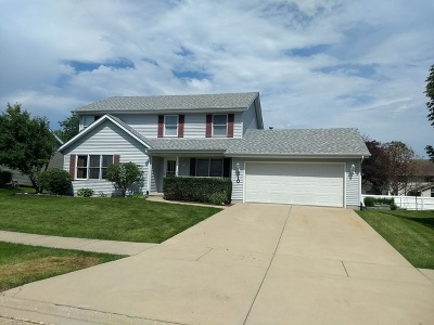 Minooka, Channahon Single Family Home For Sale: 310 Chippewa Drive