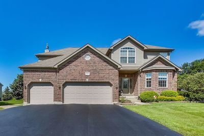 Plainfield Single Family Home For Sale: 16506 South Arbor Drive