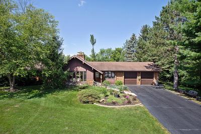 Lemont Single Family Home For Sale: 11944 Pine Avenue