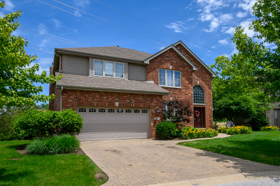Orland Park Single Family Home For Sale: 11004 Haley Court