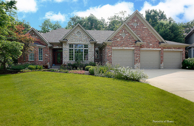 St. Charles Single Family Home For Sale: 2922 Black Walnut Lane