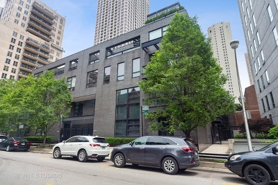 Chicago Condo/Townhouse New: 1011 North Dearborn Street