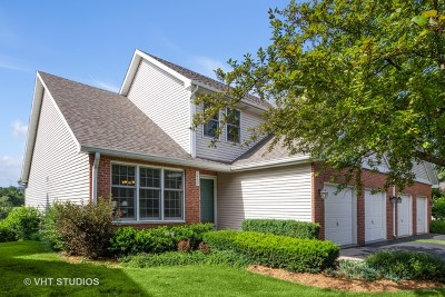 Joliet Condo/Townhouse For Sale: 3402 Lake Shore Drive