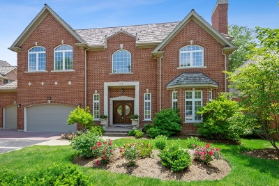 Mundelein Single Family Home For Sale: 28643 Thorngate Drive
